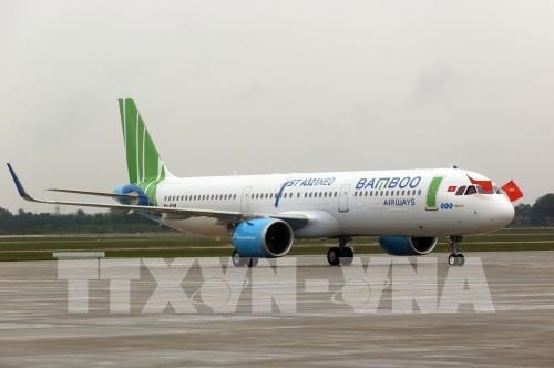 Bamboo Airways permitted to operate direct flights to Japan hinh anh 1
