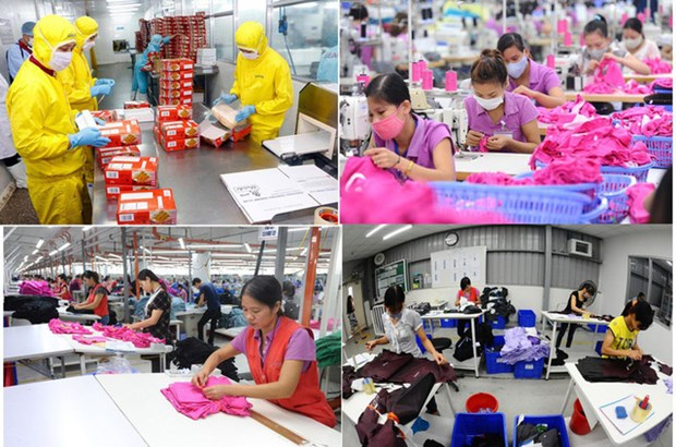 Target of one million firms a tall order amid COVID-19 hinh anh 1