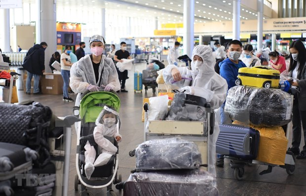 Over 340 Vietnamese citizens brought home from Russia hinh anh 1