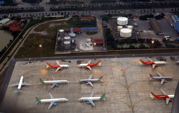 No new airlines until aviation market recovers: ministry hinh anh 1