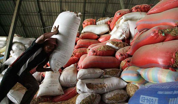 Cambodia works to enhance competitiveness of rice export hinh anh 1