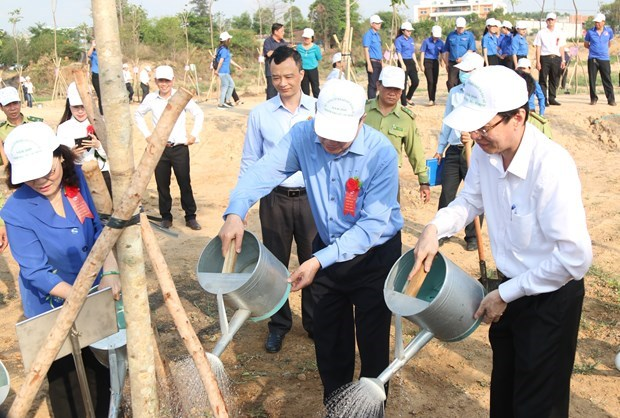 Tree planting campaigns launched to mark President Ho Chi Minh's birth anniversary hinh anh 1