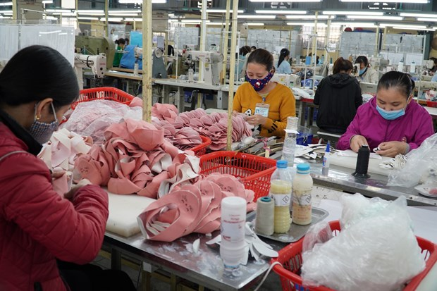 Vietnamese, US footwear firms to discuss trade amid pandemic hinh anh 1
