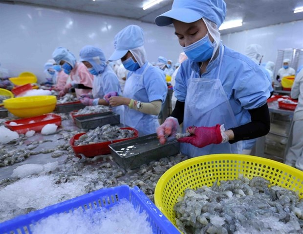 Australia to impose new regulations on prawn imports hinh anh 1