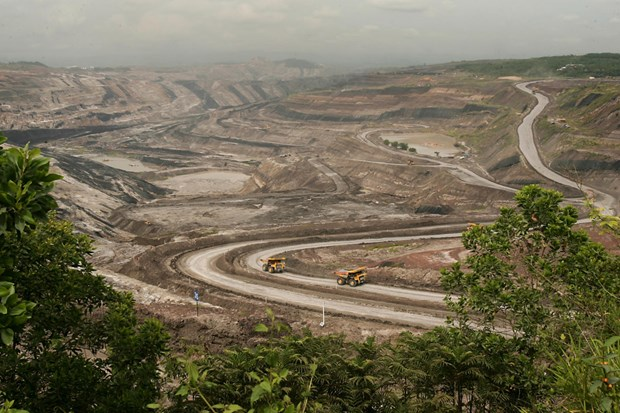Indonesian coal sector suffers due to India's dropping demand hinh anh 1