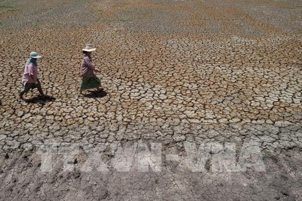 Thailand to build desalination plant to serve industrial production hinh anh 1