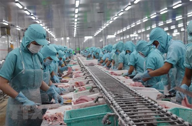 Japanese newspaper: EVFTA to lift Vietnam's post-pandemic growth hinh anh 1