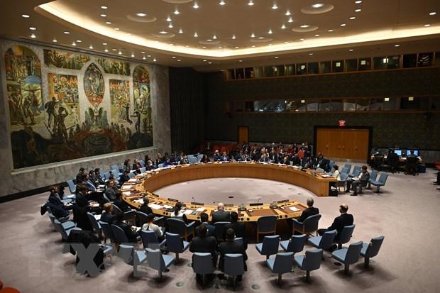 Vietnam backs UN Secretary General's efforts to ensure international peace hinh anh 1