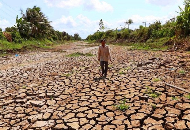 PM calls for urgent action to deal with drought, saltwater intrusion hinh anh 1