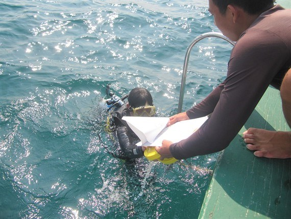 Ecosystem off Cham Islands recovers after COVID-19 hinh anh 1