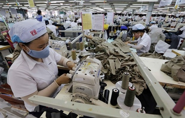 Exports shrink to lowest in first half of May hinh anh 1
