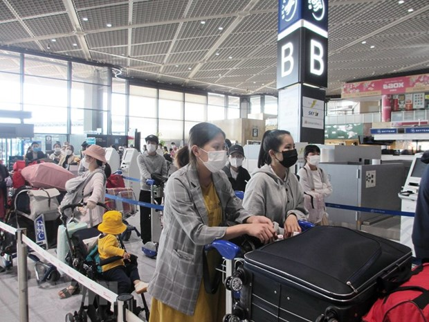 Over 340 Vietnamese citizens return home from Japan hinh anh 1