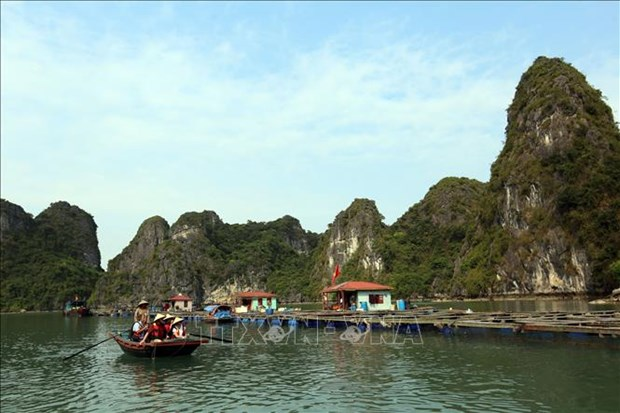 Quang Ninh: Tourism promotion efforts pay off hinh anh 1