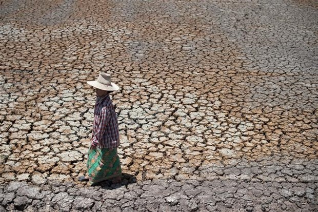 Thailand names 27 drought-hit provinces disaster zones hinh anh 1