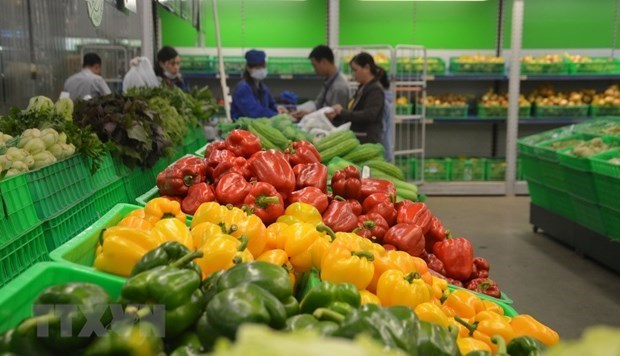 US becomes Vietnam's largest supplier of fruits, vegetables hinh anh 1