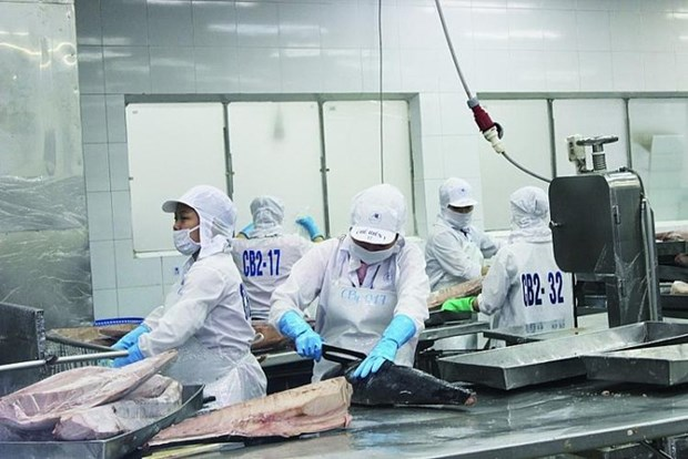 Vietnam's canned tuna exports to key markets rise hinh anh 1
