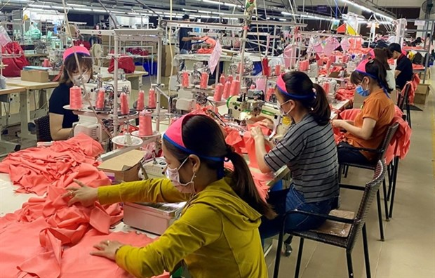 Garment exports forecast to plummet due to lack of orders hinh anh 1