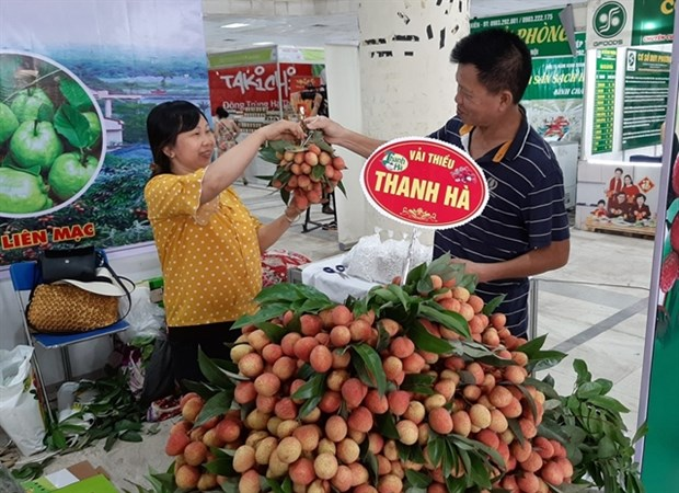 Thanh Ha lychee fair opens in Hanoi hinh anh 1