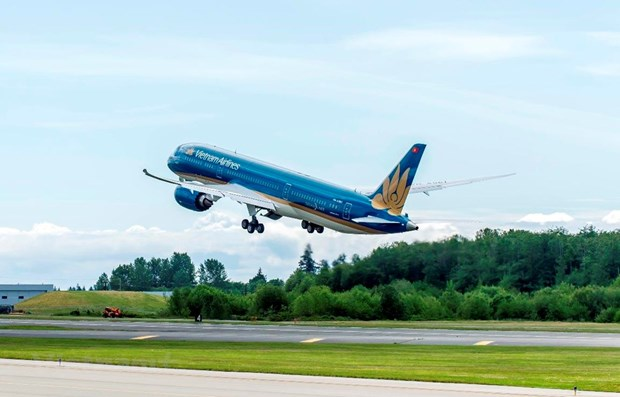 Vietnam Airlines resumes all domestic flights hinh anh 1