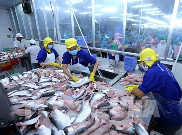 Seafood sector urged to diversify products hinh anh 1