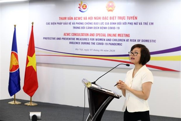 ASEAN discusses occurrence of domestic violence during pandemic hinh anh 1