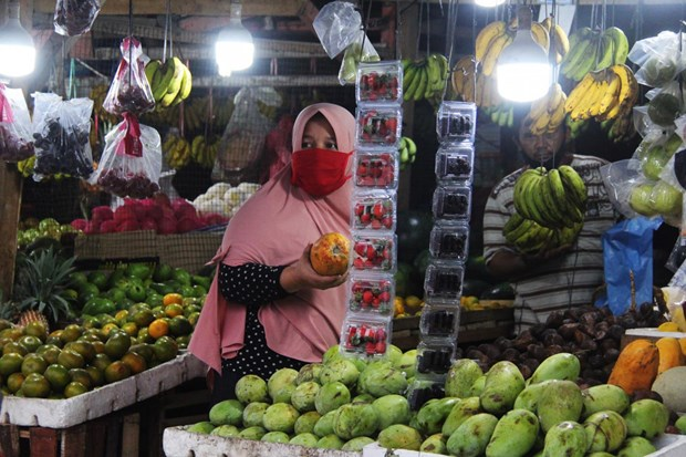 Indonesia experiences lowest inflation in two decades hinh anh 1
