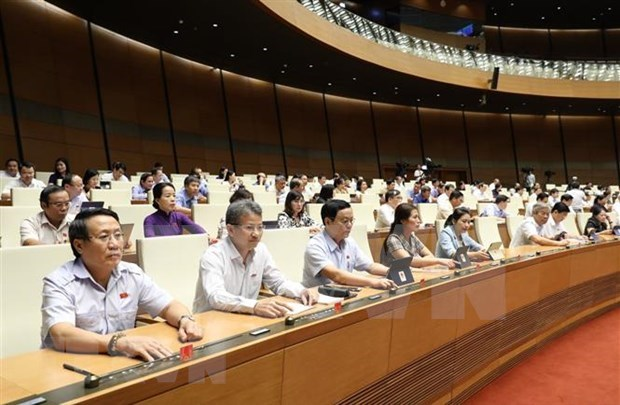 Legislators pass resolution on NA supervision programme for 2021 hinh anh 1