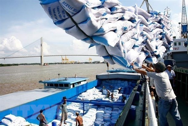 Vietnam wins bid to supply 60,000 tonnes of rice to Philippines hinh anh 1