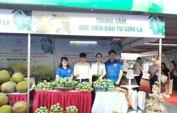 Fruit, farm produce week opens in Hanoi hinh anh 1