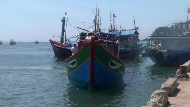 Vietnam requests China to investigate incident related to Vietnamese fishing vessel in Hoang Sa hinh anh 1