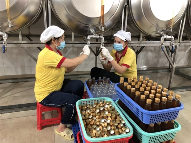 Businesses need more Gov't support to recover after pandemic hinh anh 1