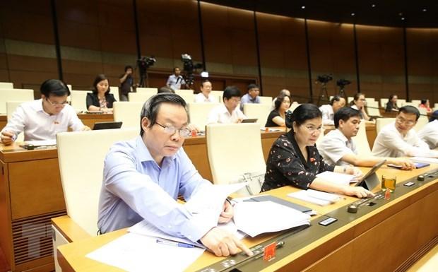 Legislators debate different draft laws on June 16 hinh anh 1