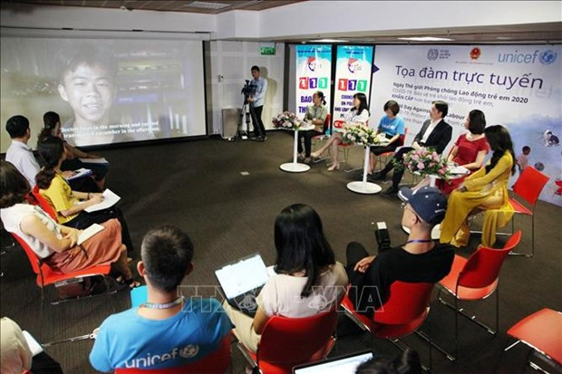 Int'l organisations work to protect Vietnamese women, children from violence hinh anh 1
