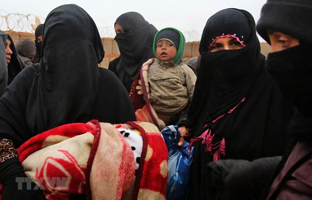 Vietnam calls for more humanitarian support for Syria hinh anh 1