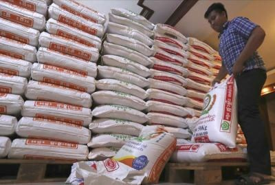Cambodia predicted to export 800,000 tonnes of rice in 2020 hinh anh 1