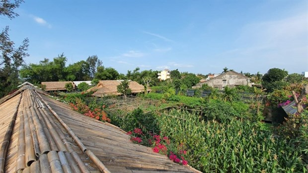 Zero-waste communities start to emerge in Hoi An hinh anh 1