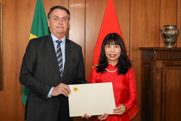 Brazilian President highly values ties with Vietnam hinh anh 1