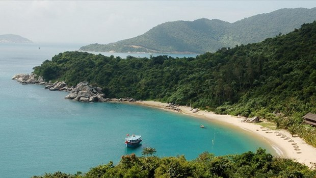 Project helps create sustainable ecological environment on Cu Lao Cham Island hinh anh 1