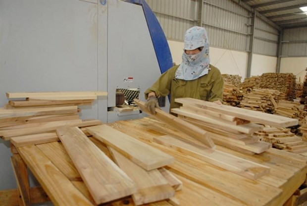 Trade defence investigations into wood products on the rise hinh anh 1