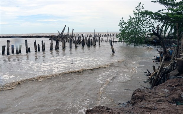 Kien Giang mobilises all resources to counter coast erosion hinh anh 1