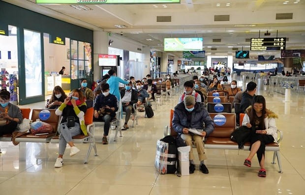 Domestic services at Noi Bai airport resume hinh anh 1