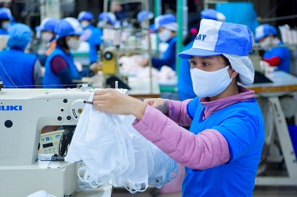 Vinatex predicts 50 percent drop in profit before tax this year hinh anh 1