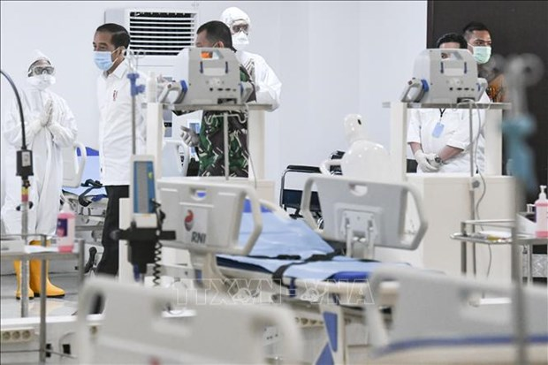 ASEAN leaders show determination to overcome pandemic hinh anh 1