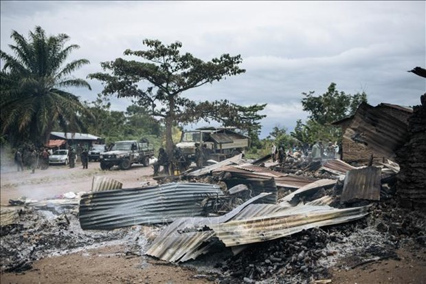 UN Security Council seeks to cope with security challenges in DR Congo hinh anh 1