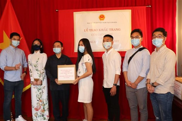Face masks sent to help OVs in Canada prevent COVID-19 hinh anh 1