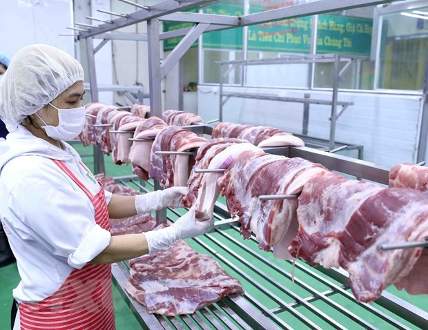CPI up 0.66 percent in June hinh anh 1