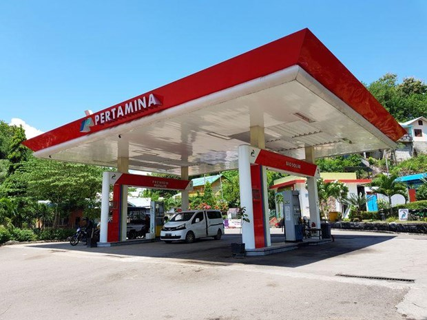 Indonesia to cut diesel subsidy by half next year hinh anh 1