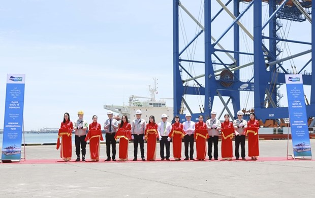 Cranes shipped to port in Ba Ria-Vung Tau province hinh anh 1