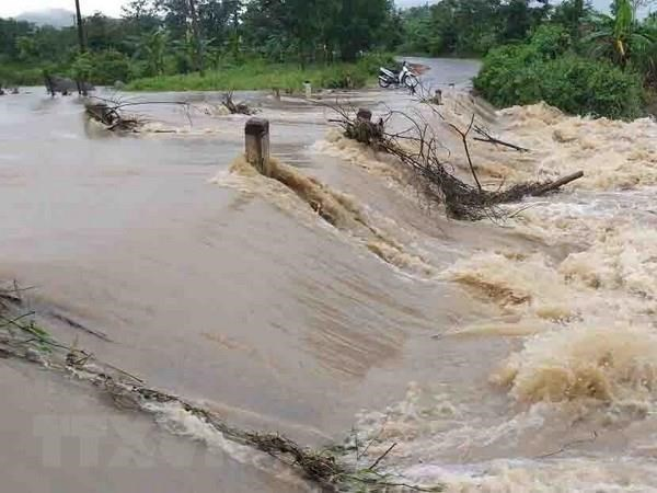 Deputy PM urges localities, ministries to brace for floods hinh anh 1