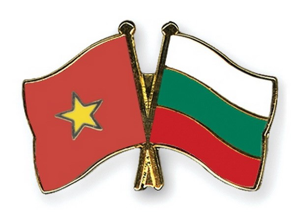 Activities planned to mark 70 years of Vietnam-Bulgaria diplomatic ties hinh anh 1